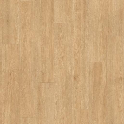 BACL40130_Topshot-B2B Square
